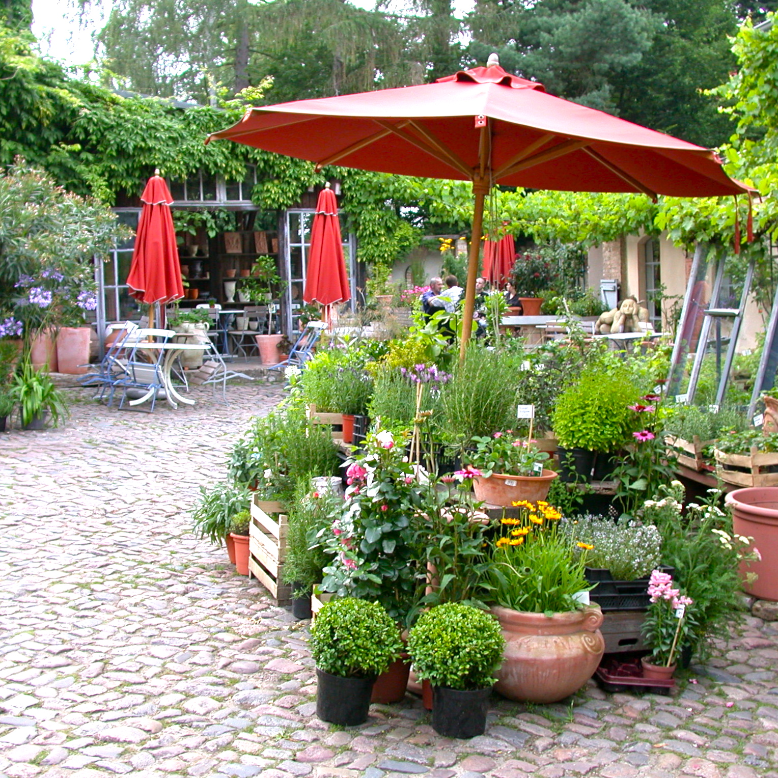 Hofcafe-Mutter-Fourage-Berlin-Wannsee-Hof