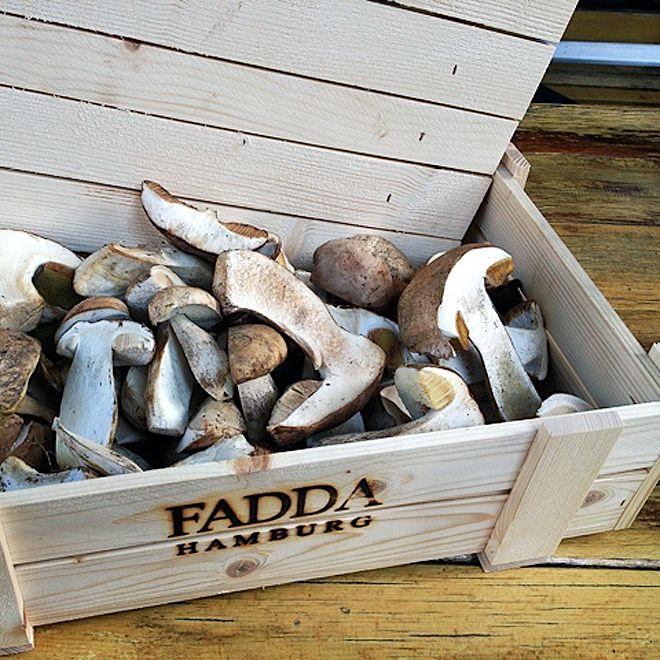Fadda-Italiener-Restaurant-Pilse