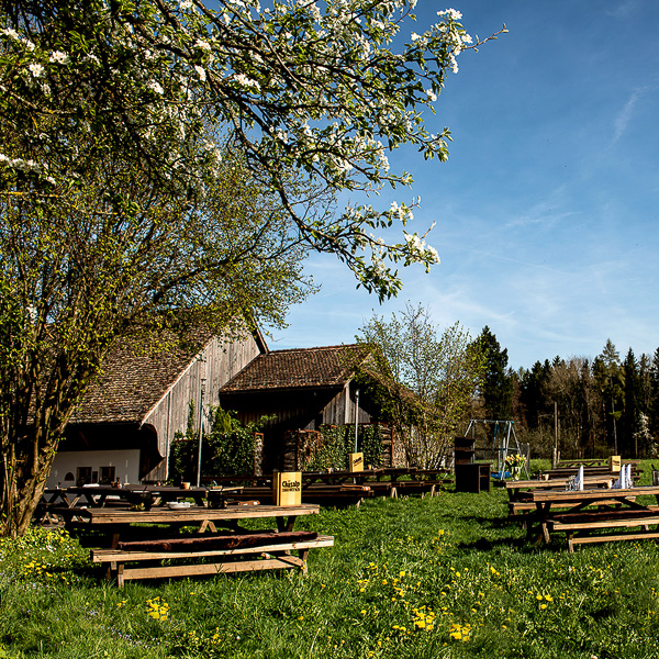 Chaesalp-Gasthof-Garten-Zuerich-6