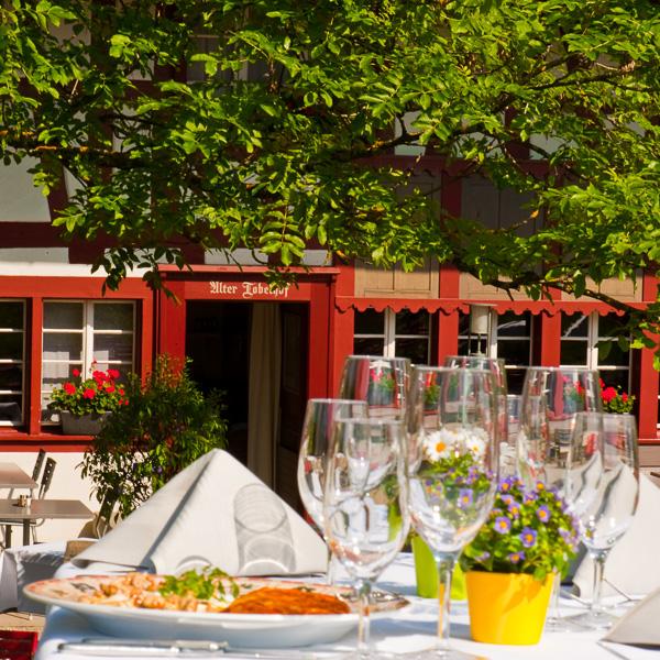 Todelhof-Gasthof-Garten-Zuerich-4