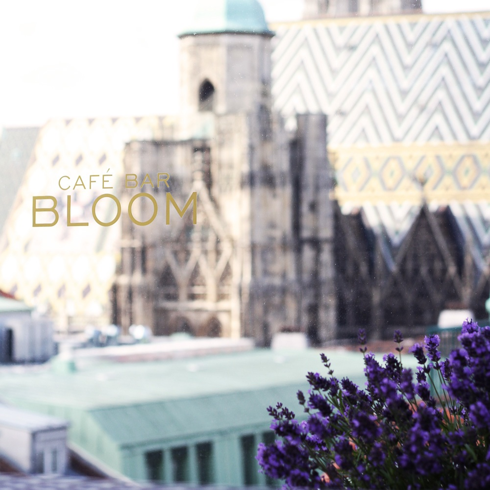 Bloom Dachterrasse Cafe Bar Wien Fenster