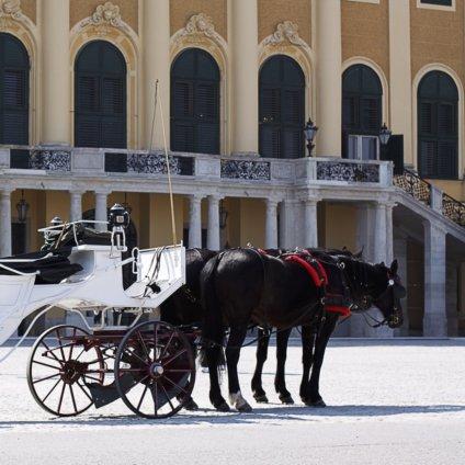 Kutsche vor Schloss Schönbrunn