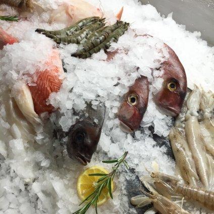 Lesendro Fisch Restaurant Berlin Fisch auf Eis