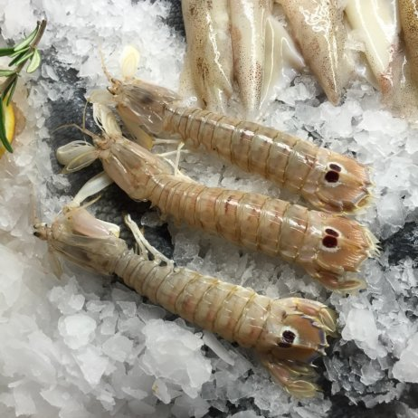 Lesendro Fisch Restaurant Berlin Schalentiere