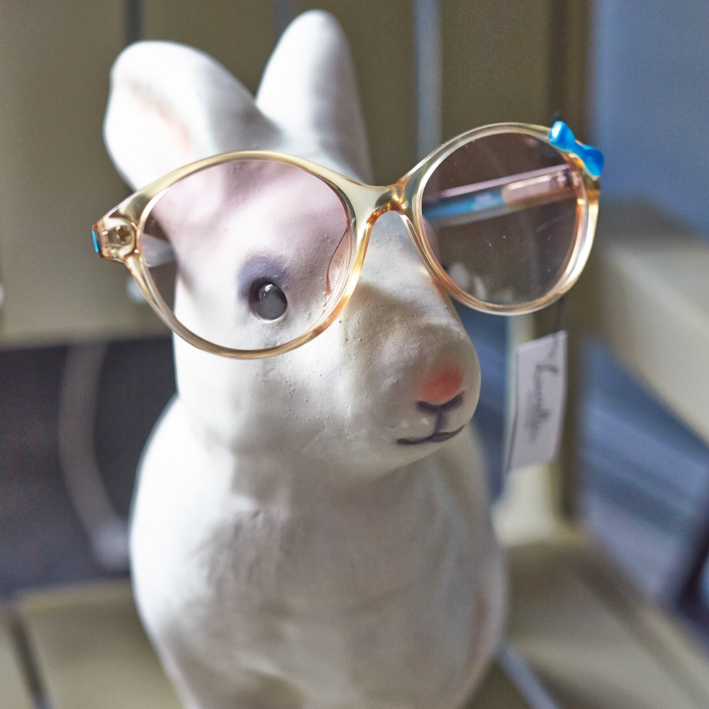 Lunette Brillen Dunkerstraße Berlin Hase mit Brille