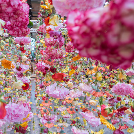 Bikini Berlin Rebecca Louise Law Installation Details