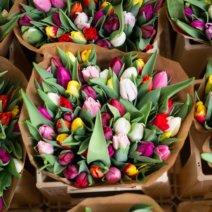 Elisabethmarkt München Blumen