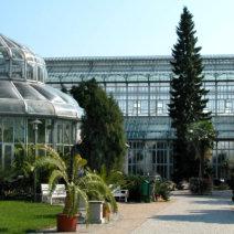 Botanischer-Garten-Berlin