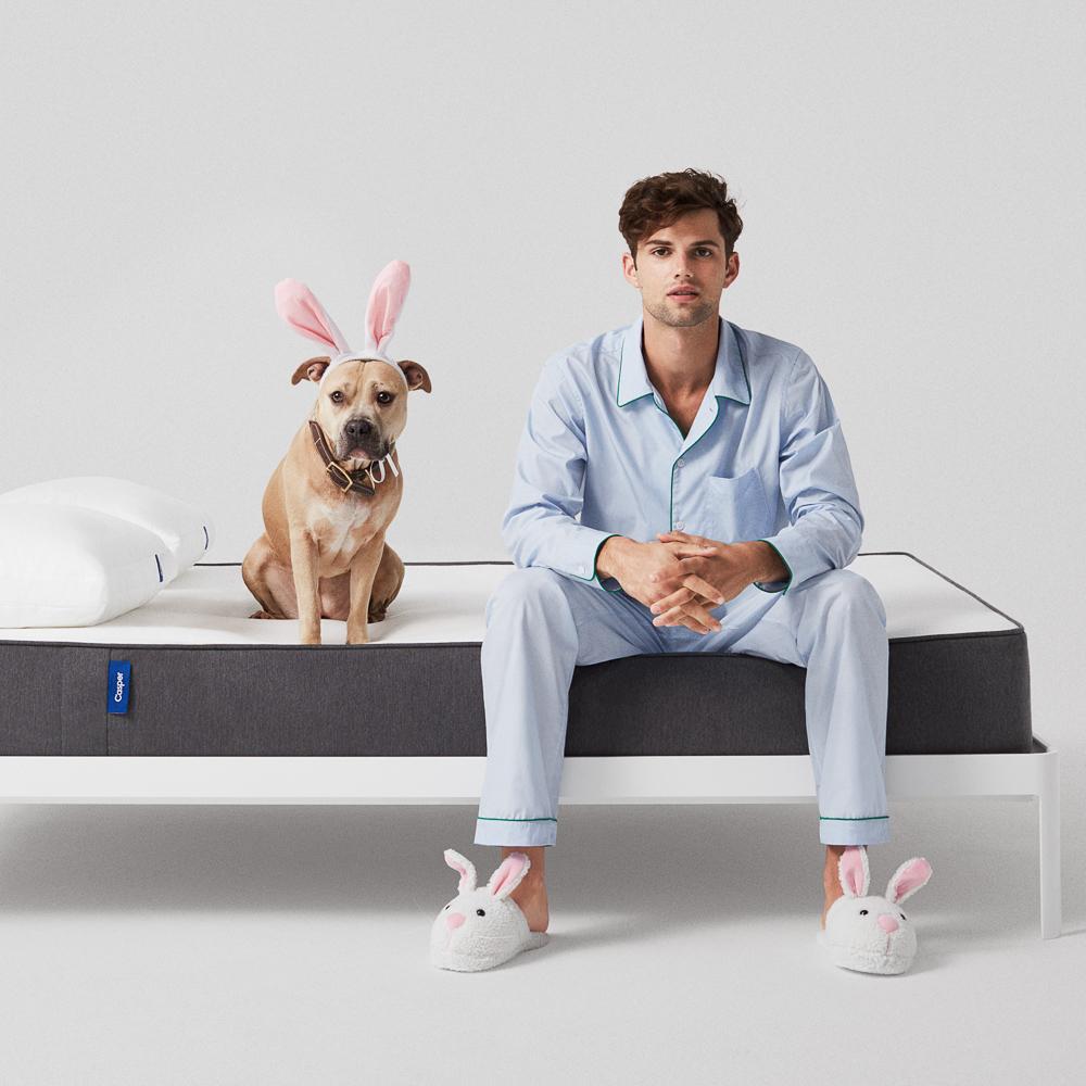 Casper Matratzen online bestellen Hund
