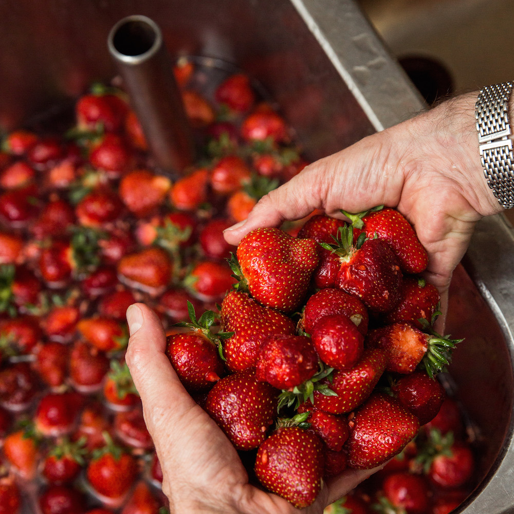 Gelati di Zurigo Erdbeeren