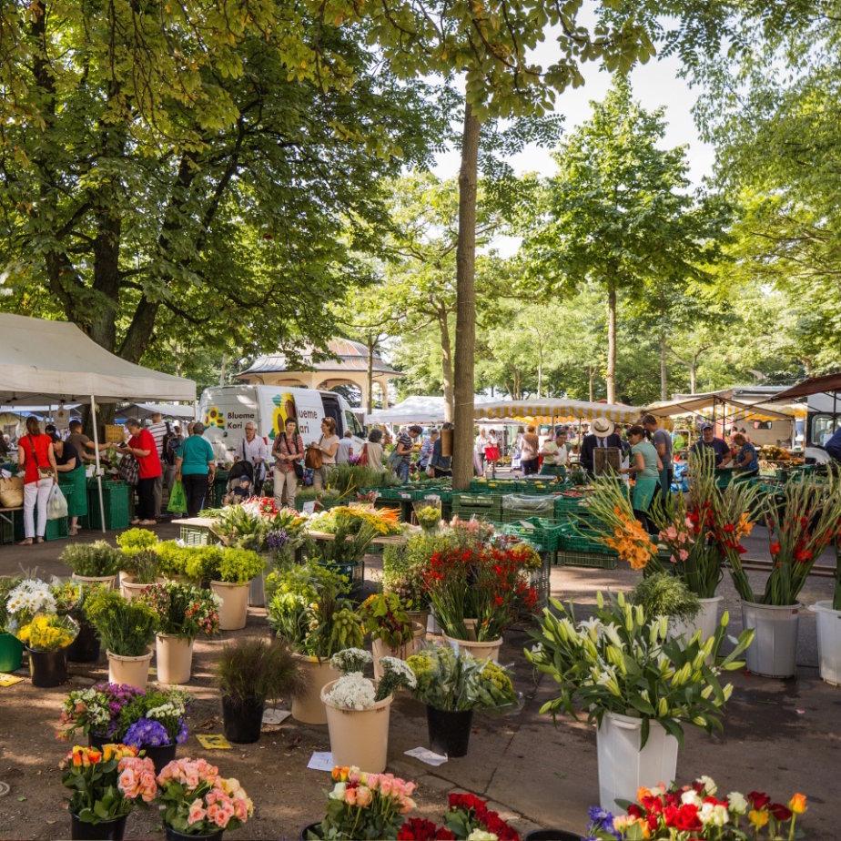 Bürkliplatz Markt