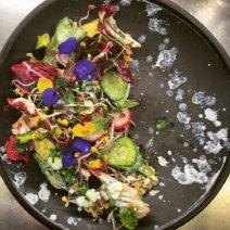 Gratitude Organic Eatery München - Vegetarisches Restaurant Maxvorstadt