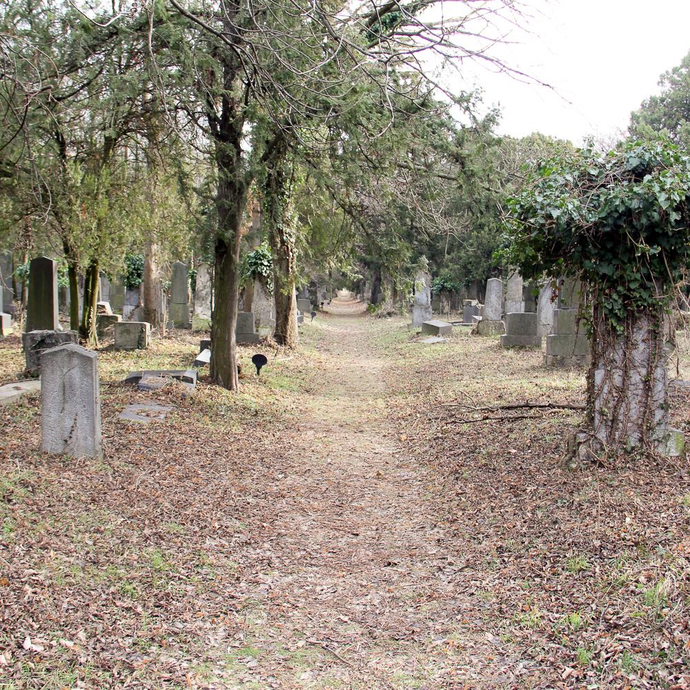 Alter jüdischer Teil des Zentralfriedhofs Wien-3