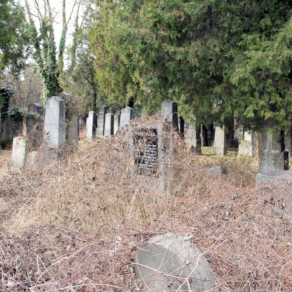 Alter jüdischer Teil des Zentralfriedhofs Wien-4