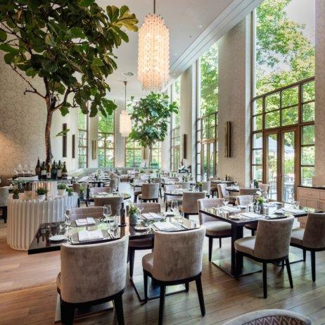 The Charles Hotel München_Sophia's Restaurant_Interieur mit Pflanzen