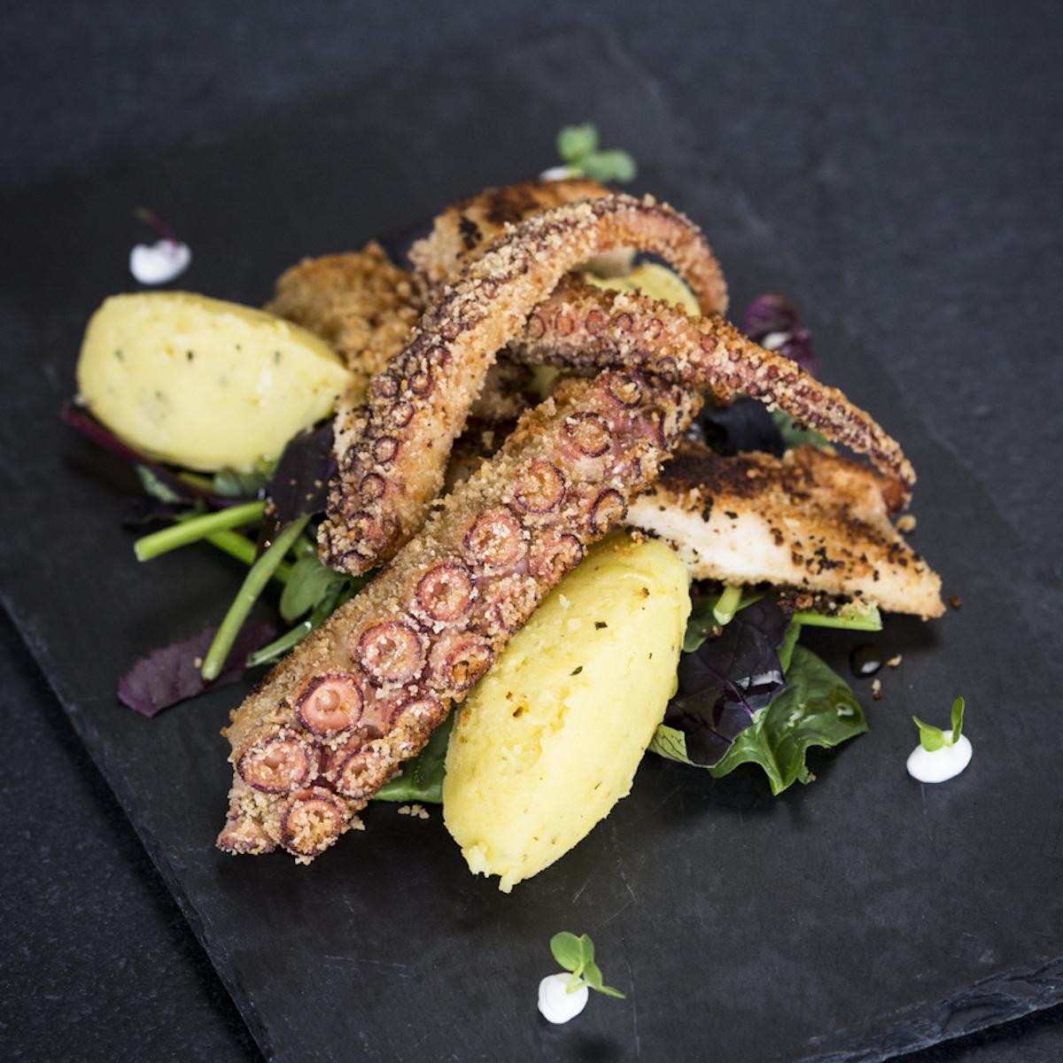 Restaurant Comera München_Gegrillter Oktopus