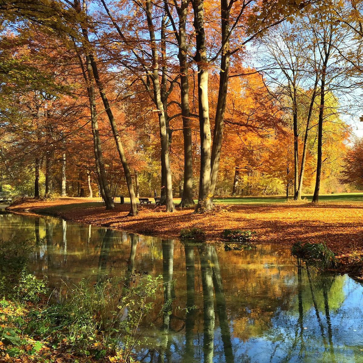 Englischer Garten München im Herbst