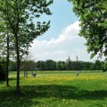 Englischer Garten München im Sommer