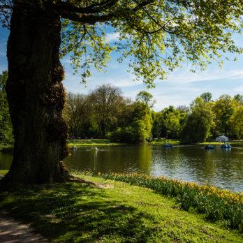 Feringasee Baden in München Top 10