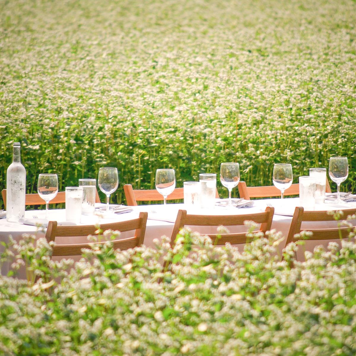 Secret Dinner präsentiert Dinner im Grünen