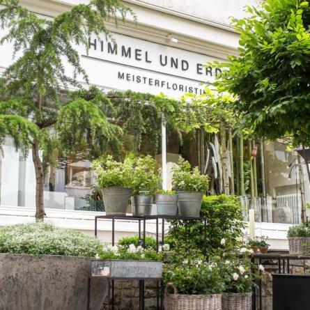 Blumenladen Himmel und Erde Hamburg-4