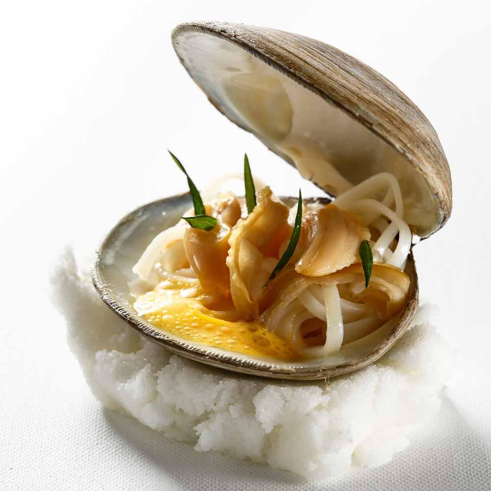 momo cookbook photo : www.danp.co.il