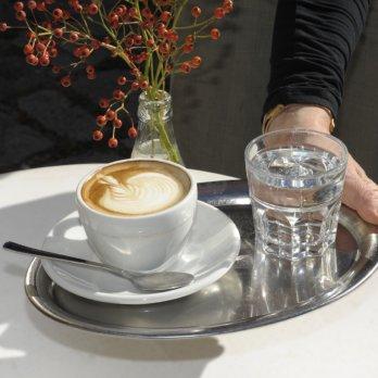 Neues Café Antikensammlung_München