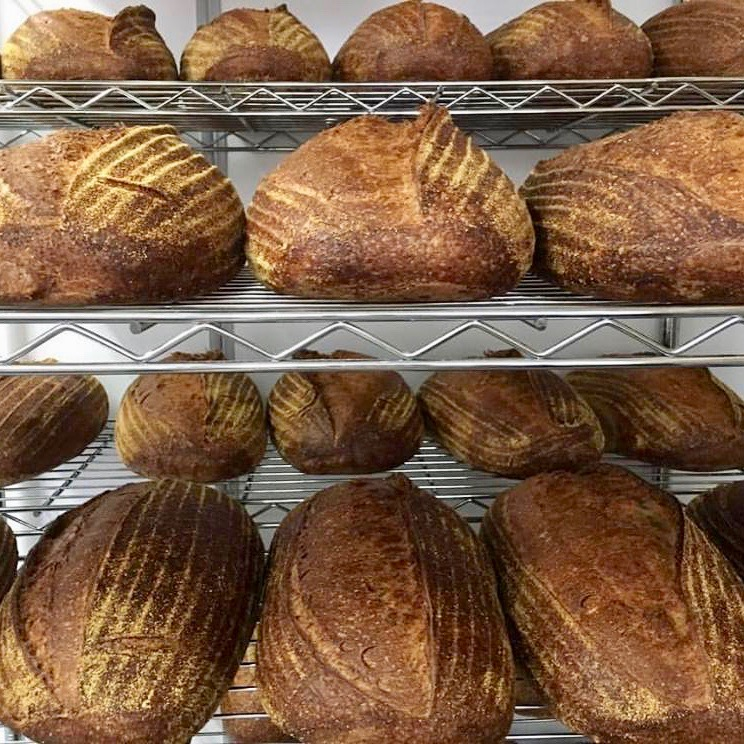 Brot in der Bäckerei Albatross in Kreuzberg