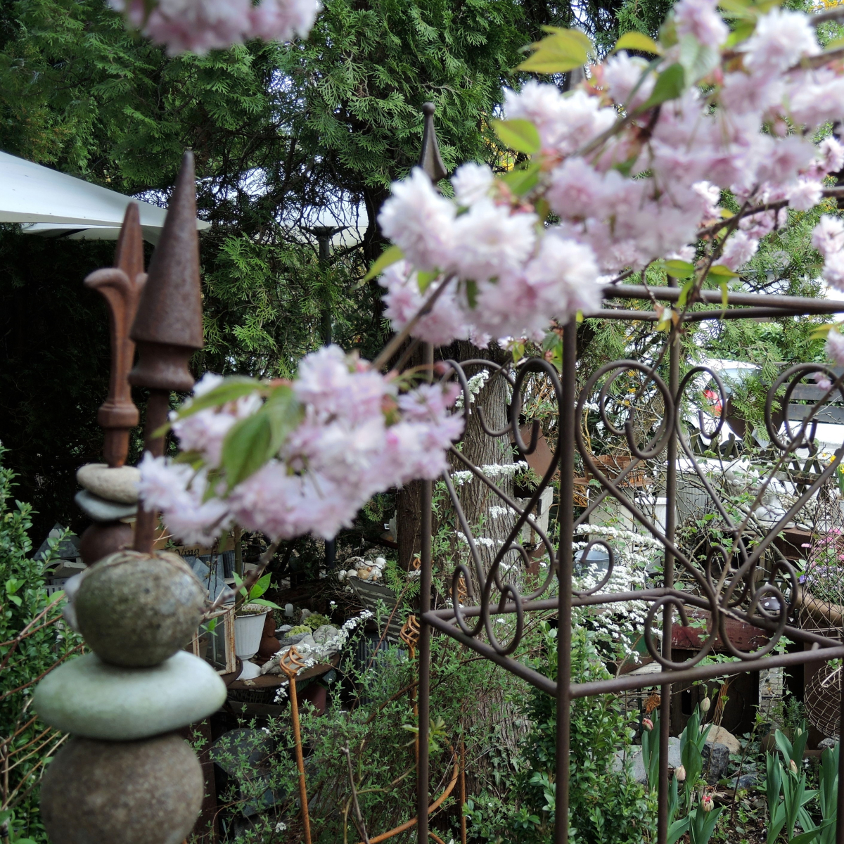 Blumengalerie Isolde Rieser München (1)