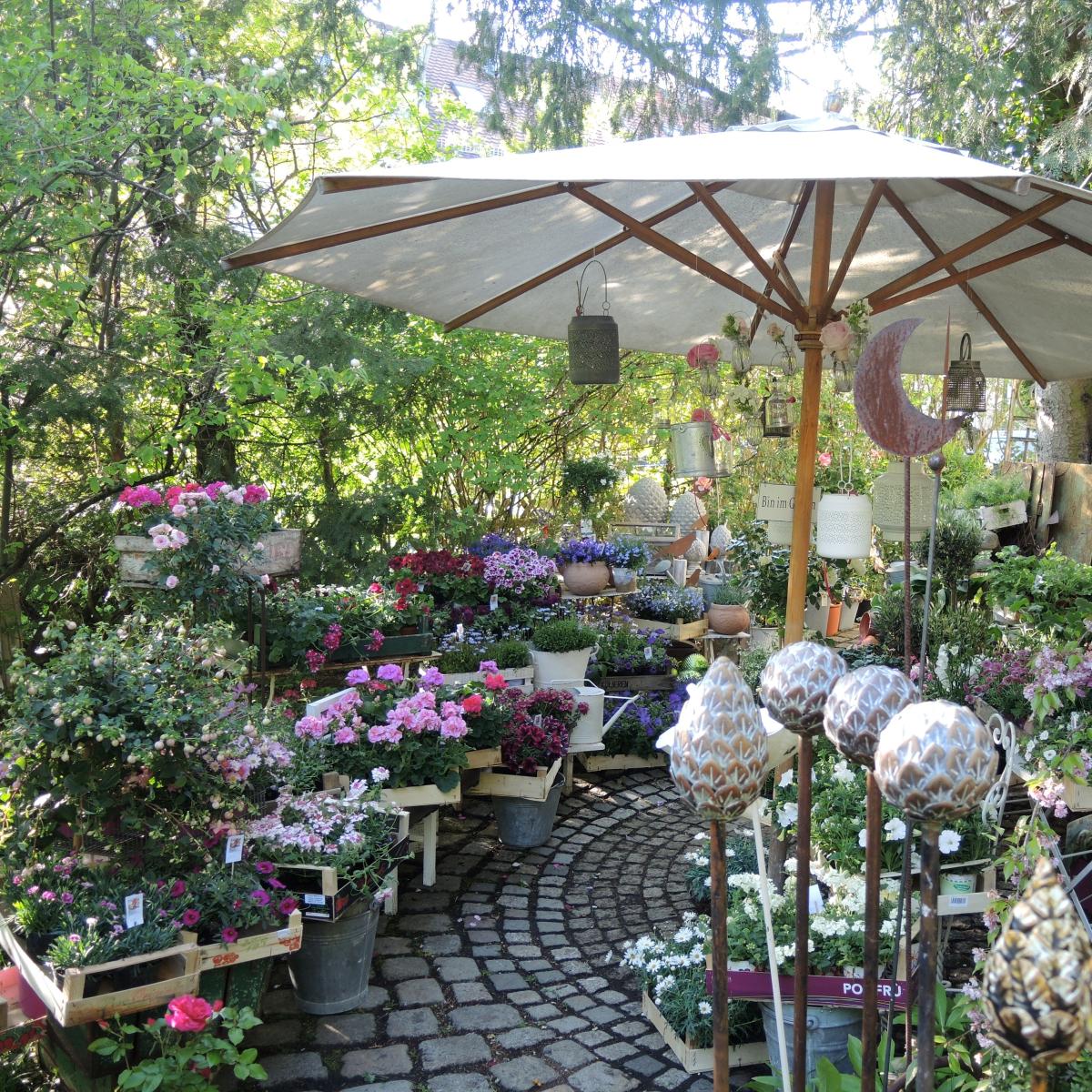 Blumengalerie Isolde Rieser München