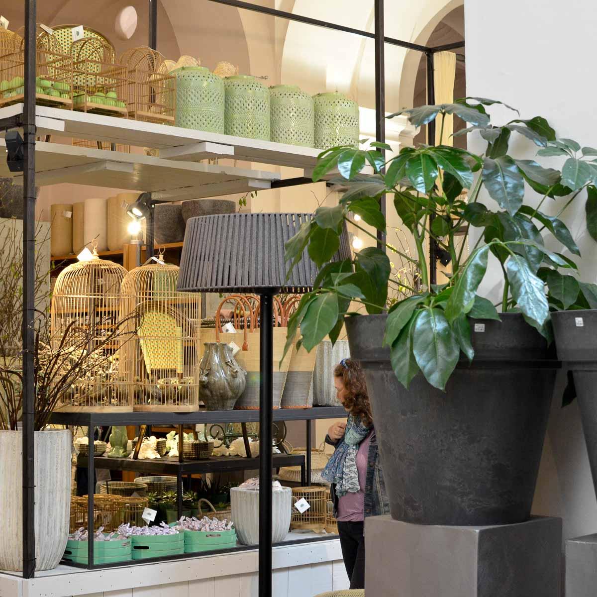Lederleitner Blumen und Gartenkunst in Wien-2