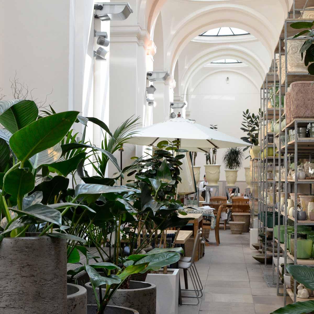 Lederleitner Blumen und Gartenkunst in Wien-3