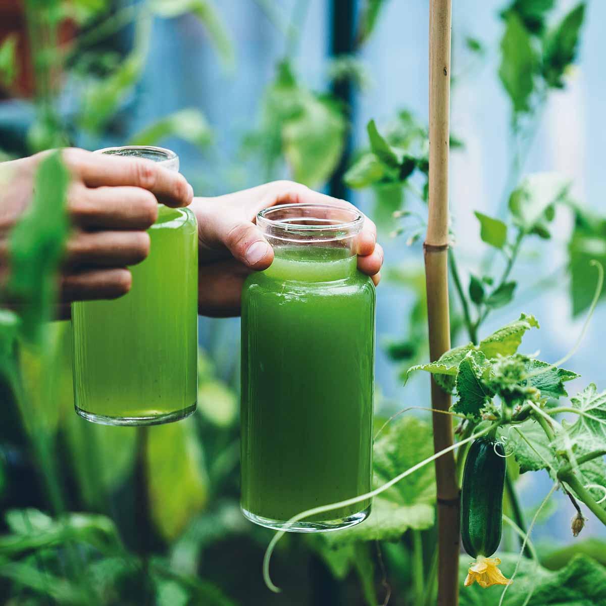 Rezept für Geeiste Gurken-Limetten-Limonade
