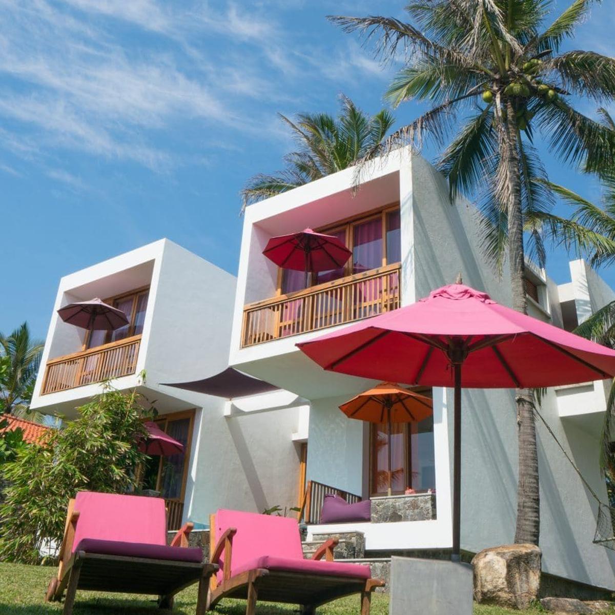 Underneath the Mango Tree | Sri Lanka