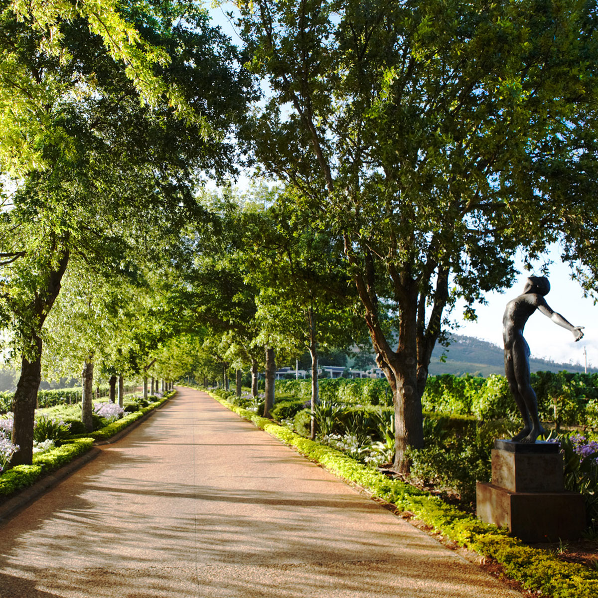 Delaire Graff Estate | Winelands