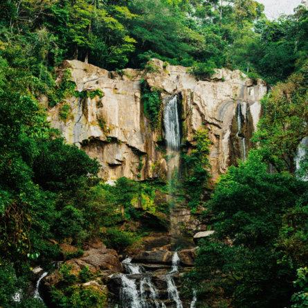 costa-rica-3-445x445.1573655478