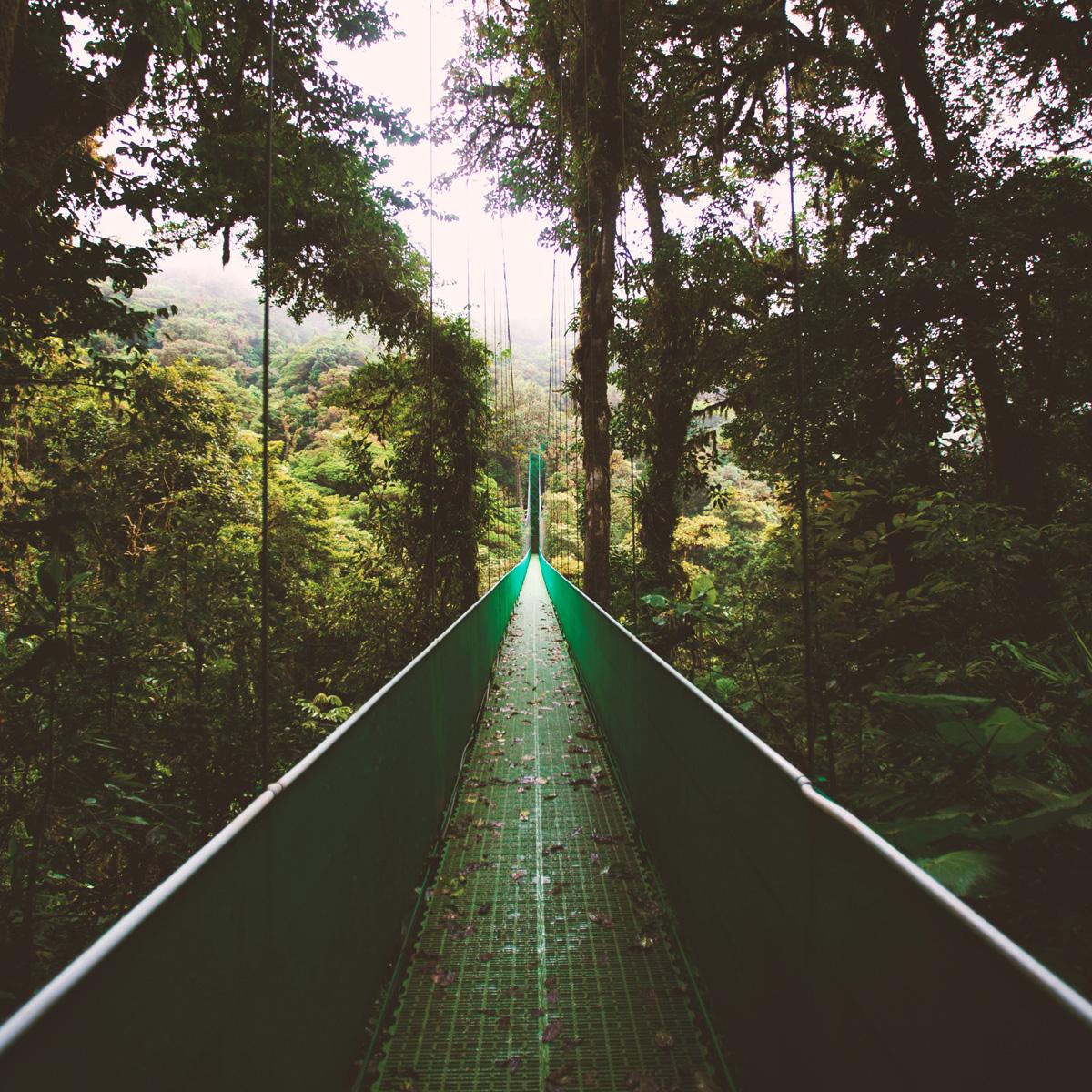 Costa Rica © Ben Ostrower | unsplash