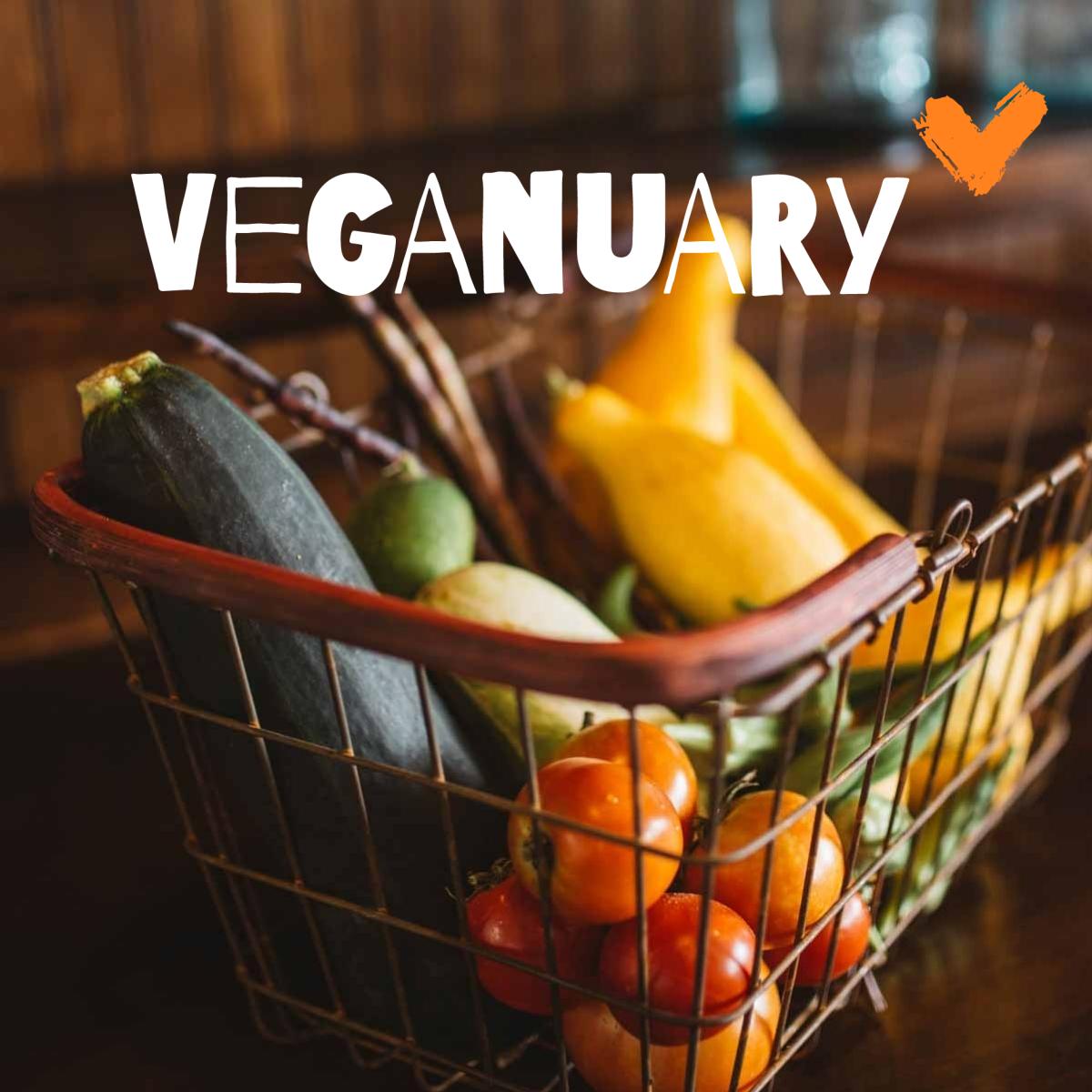 Veganuary Teaser