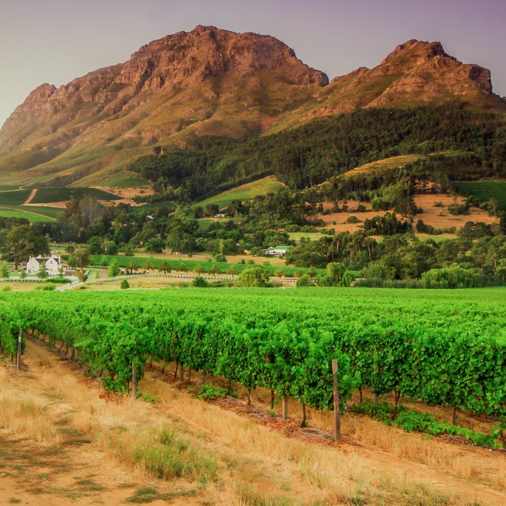 Südafrika Gemeinschaftsabenteuer für Alleinreisende-12