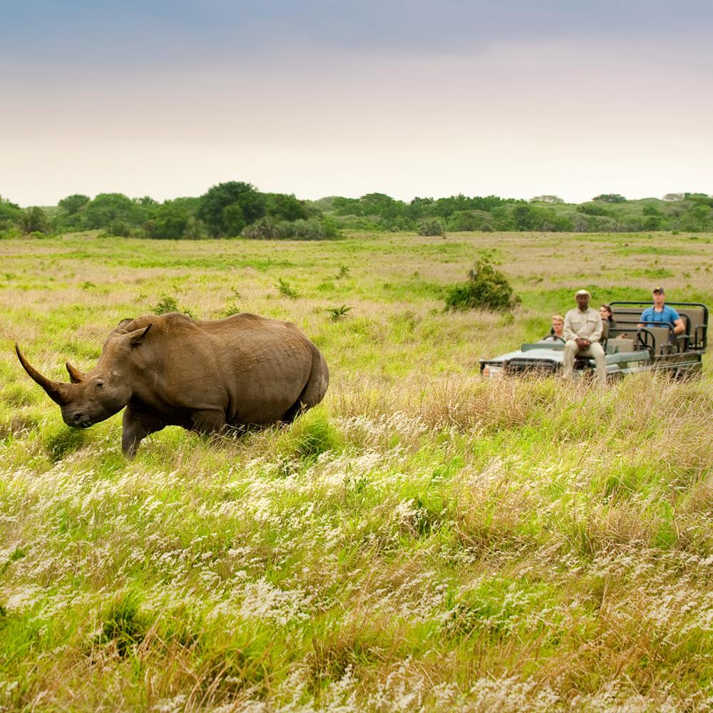 Südafrika Gemeinschaftsabenteuer für Alleinreisende-2