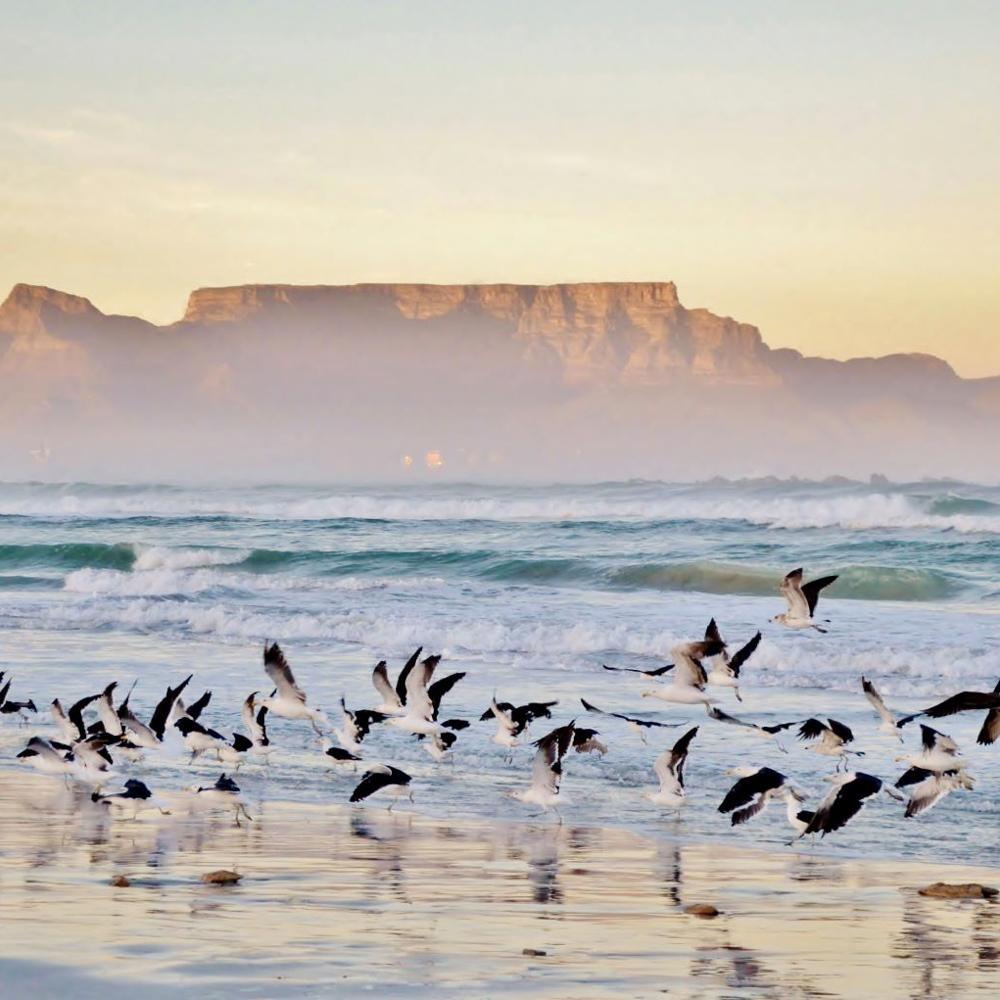 Südafrika Gemeinschaftsabenteuer für Alleinreisende-7