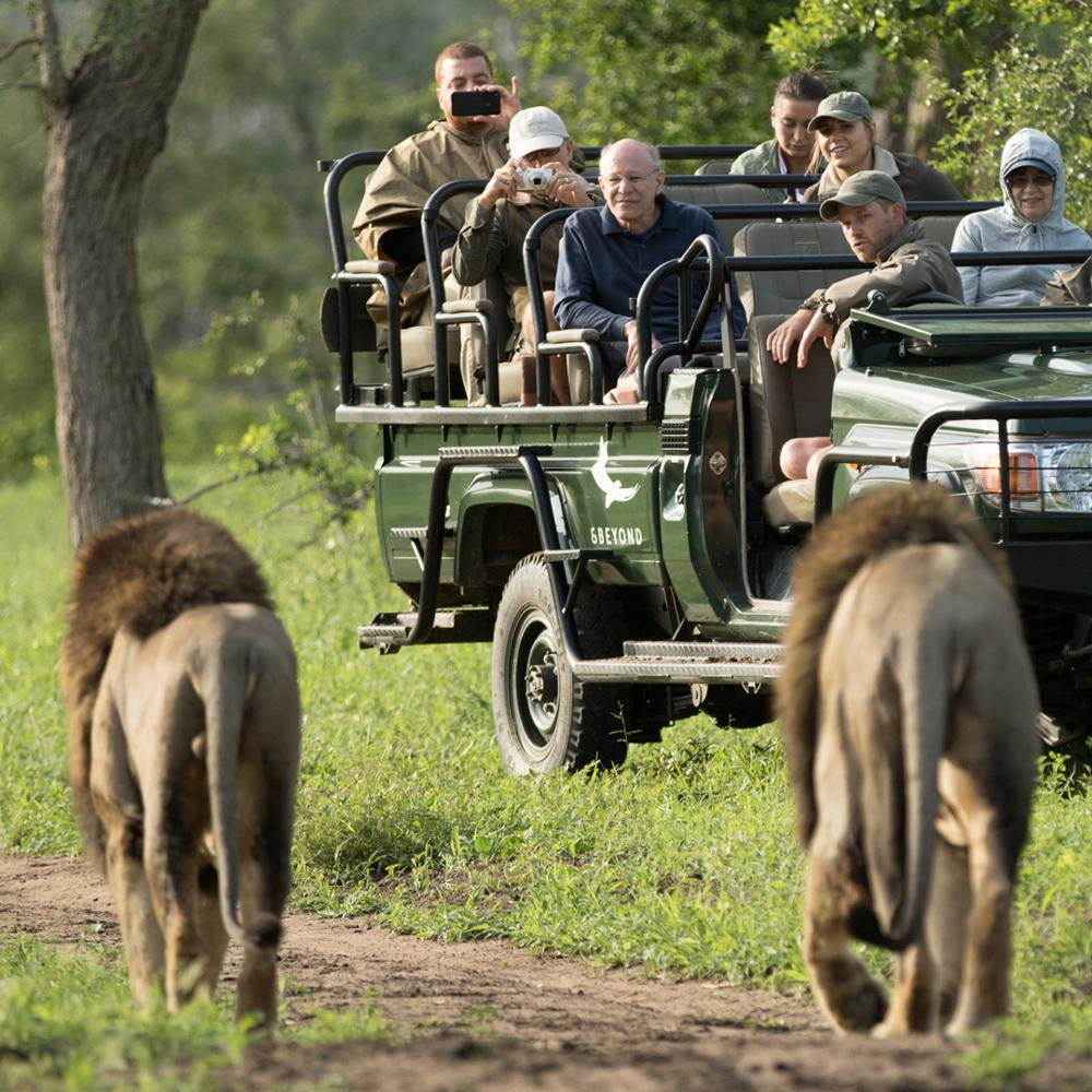 Südafrika Gemeinschaftsabenteuer für Alleinreisende