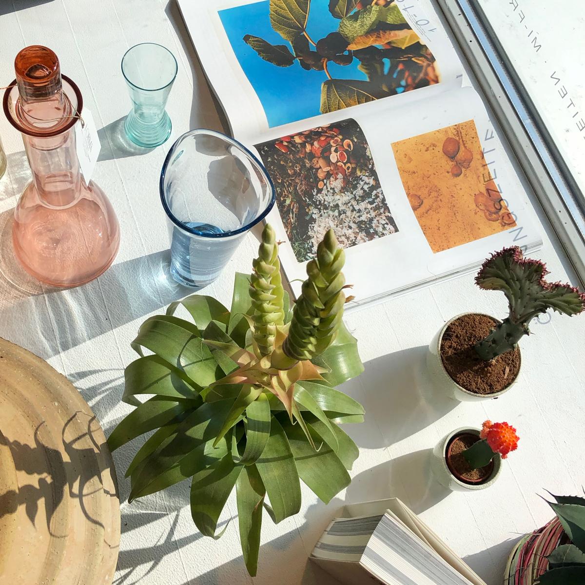 Forma Laboratoy Florist München-7