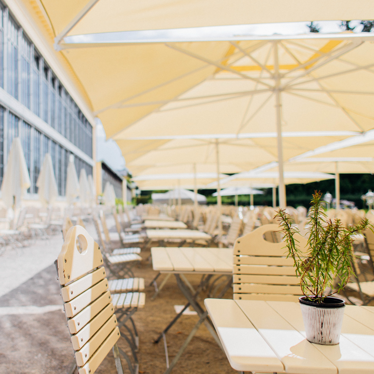 Restaurant-Café Palmenhaus im Schloss Nymphenburg-2