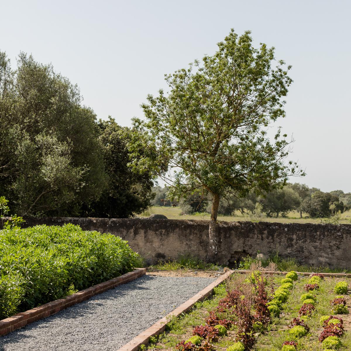 São Lourenço do Barrocal Garten ©Ash James