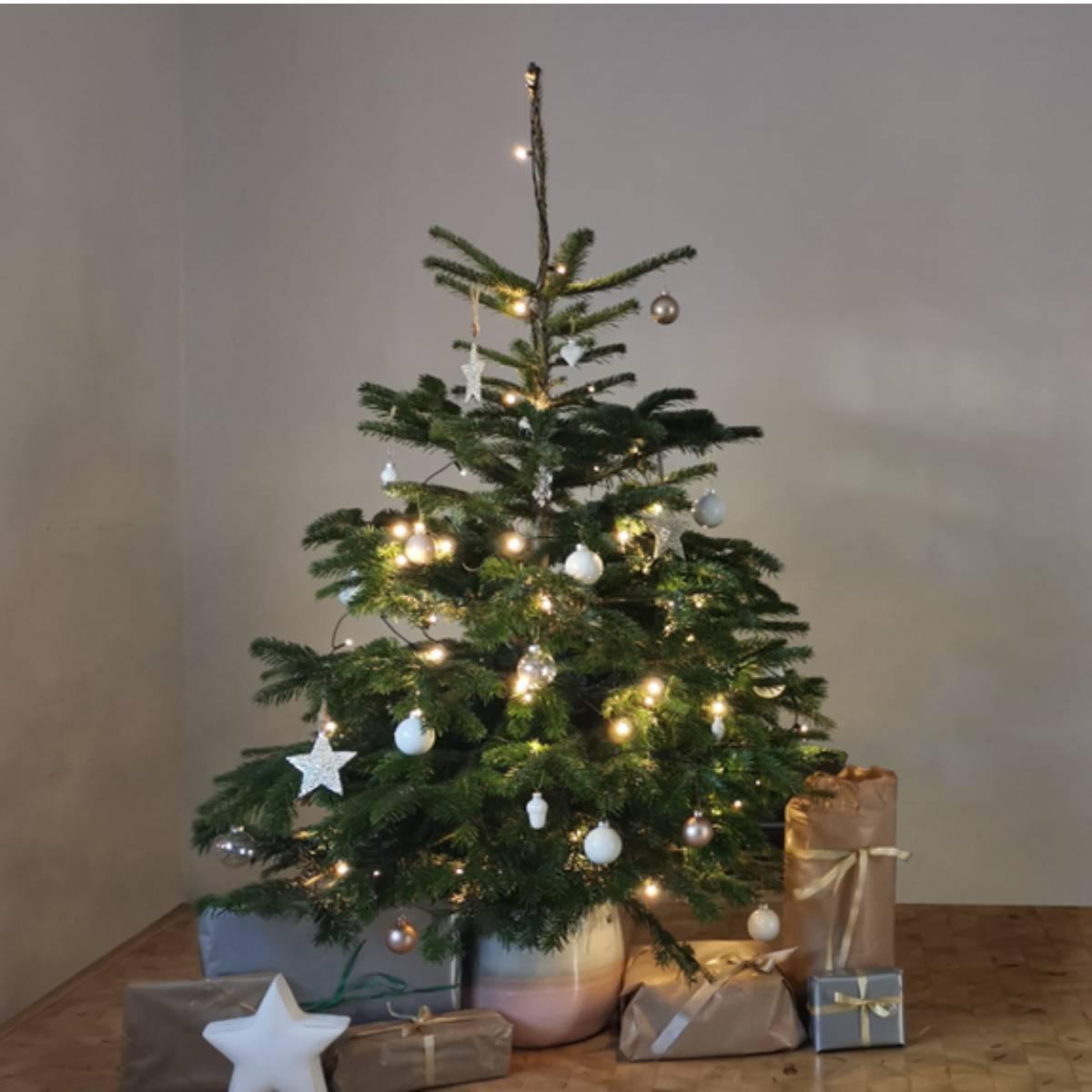 Wundertree Geschenke 2
