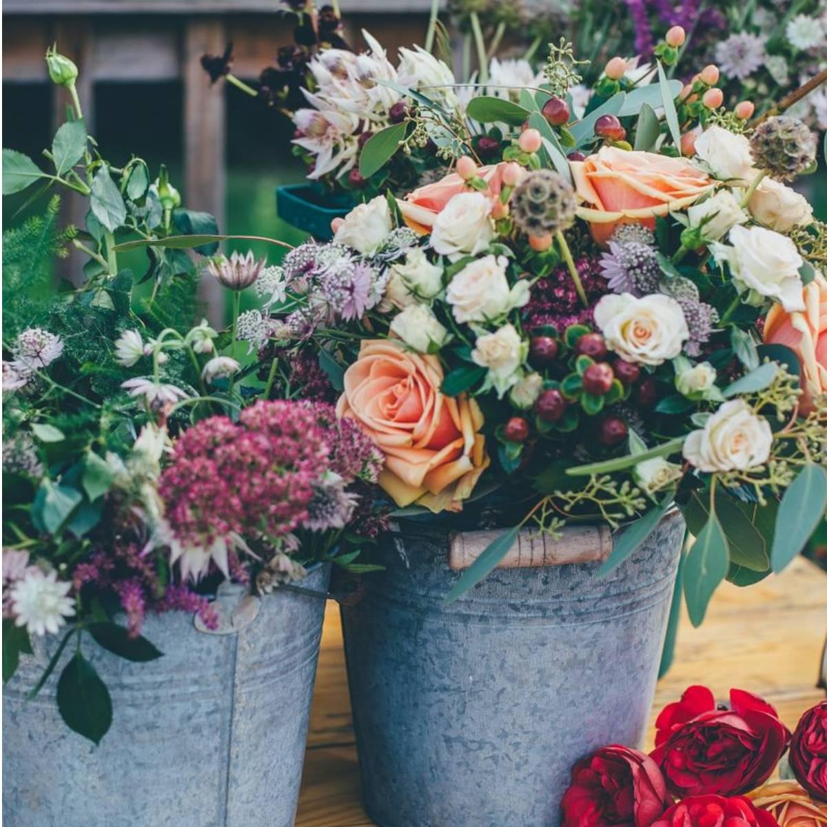 Blumen (3)