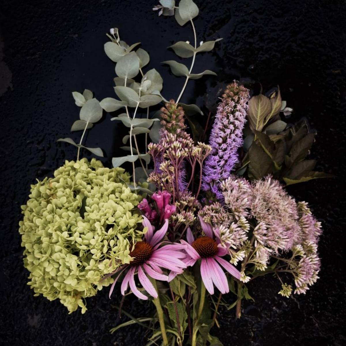 Wandelrose Blumenladen