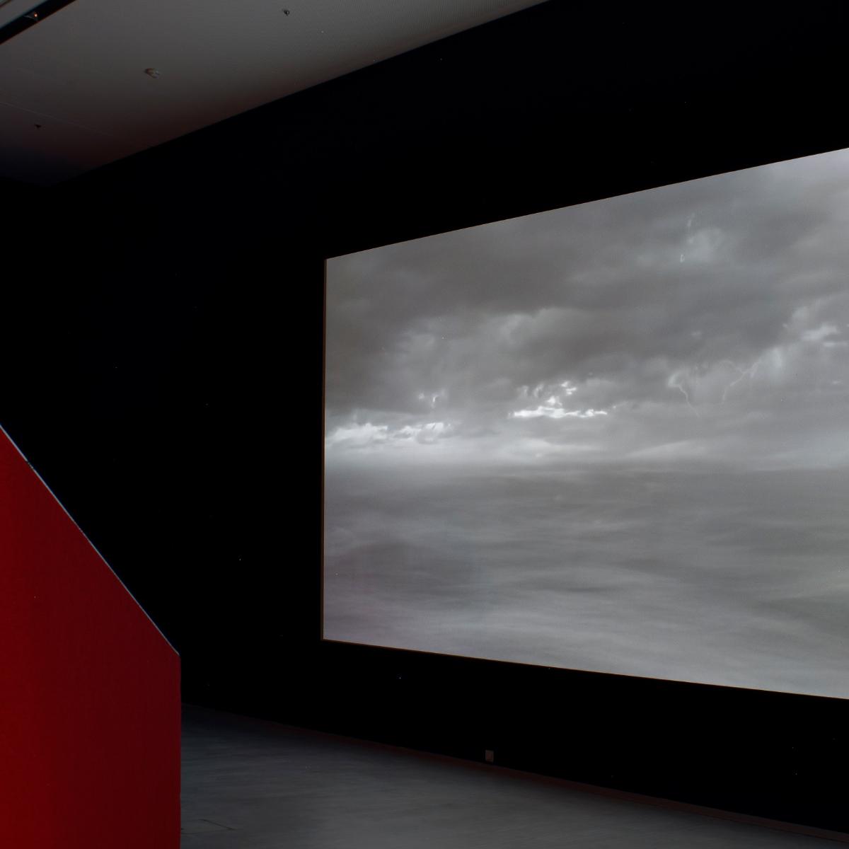 D A R K   W A T E R S   &   S N O W   F O X, 20182019,  12x12 video space @Berlinische Galerie, Museum Berlin