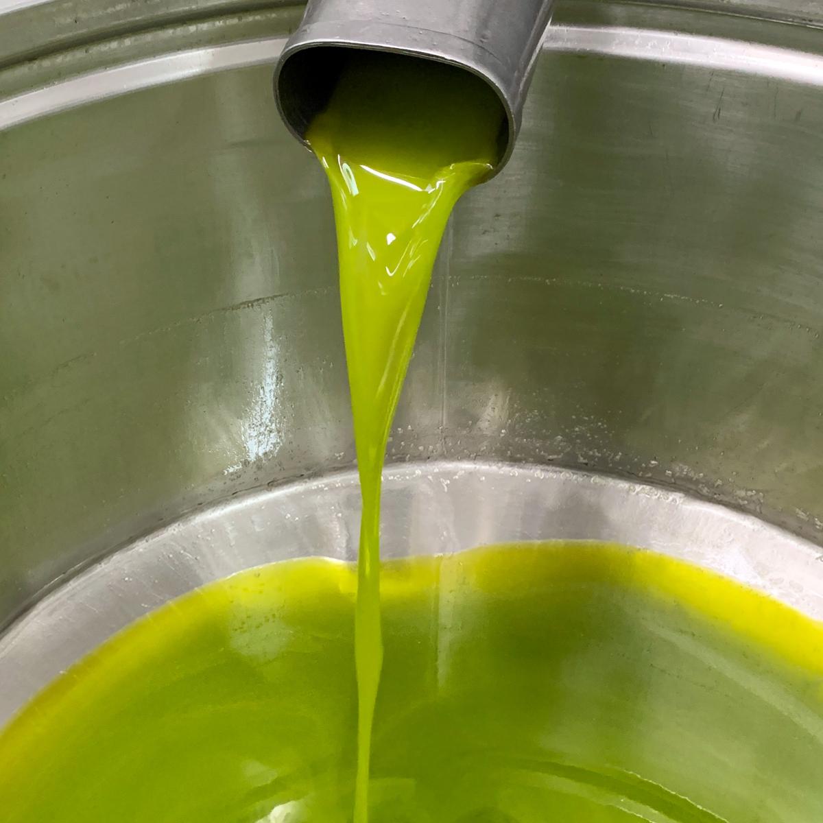 Tavor Oil Olivenoel